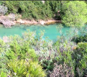 rio guadiaro en cañon Buitreras