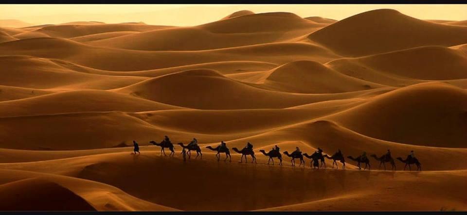 El desierto, la inmensidad del silencio